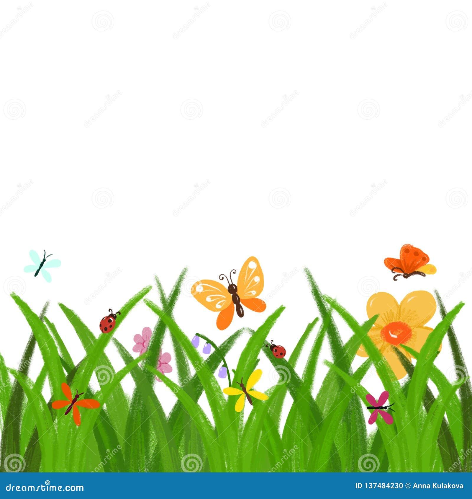 Clipart (images graphiques) tiré par la main de ressort ou d été - herbe verte avec les fleurs et la frontière de papillons d iso