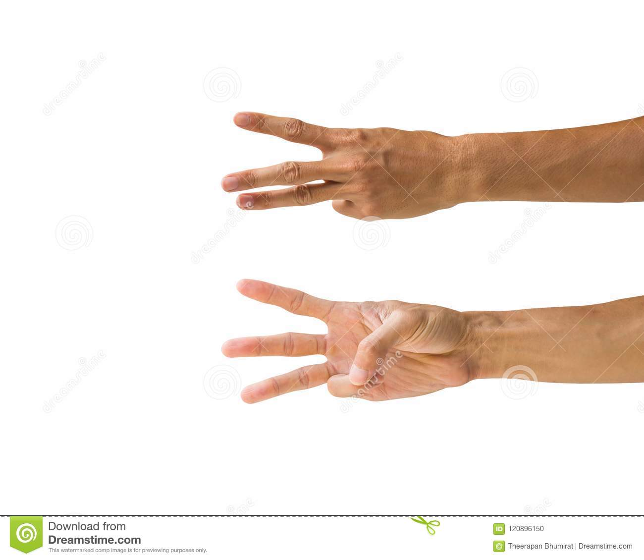 Clipping Path Hand Gestures Isolated On White Background Hand M