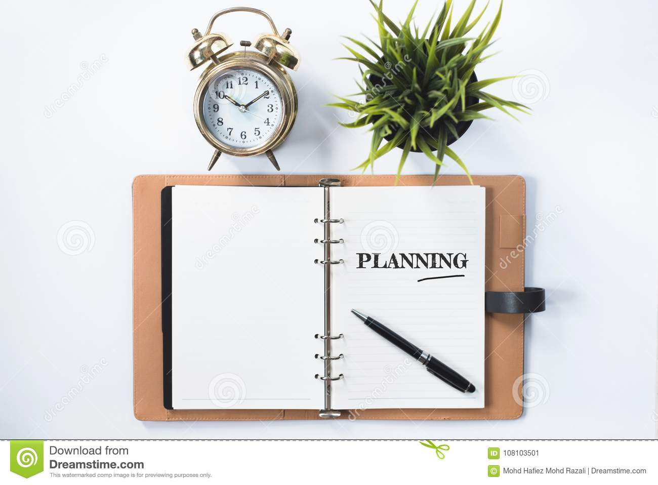 Clock, green plant and blank notebook with PLANNING word