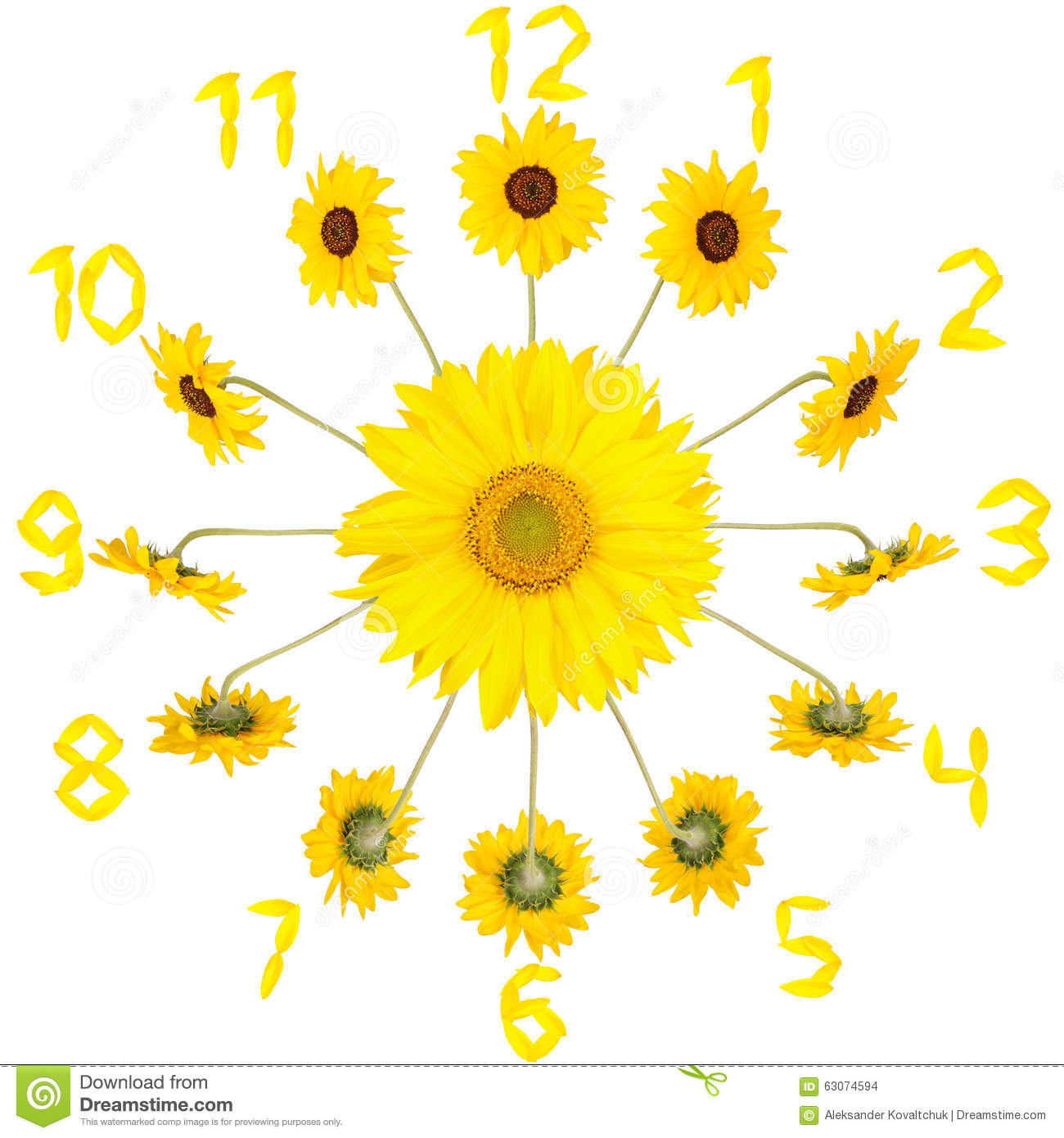 clock with sunflowers stock photo image 63074594. Black Bedroom Furniture Sets. Home Design Ideas