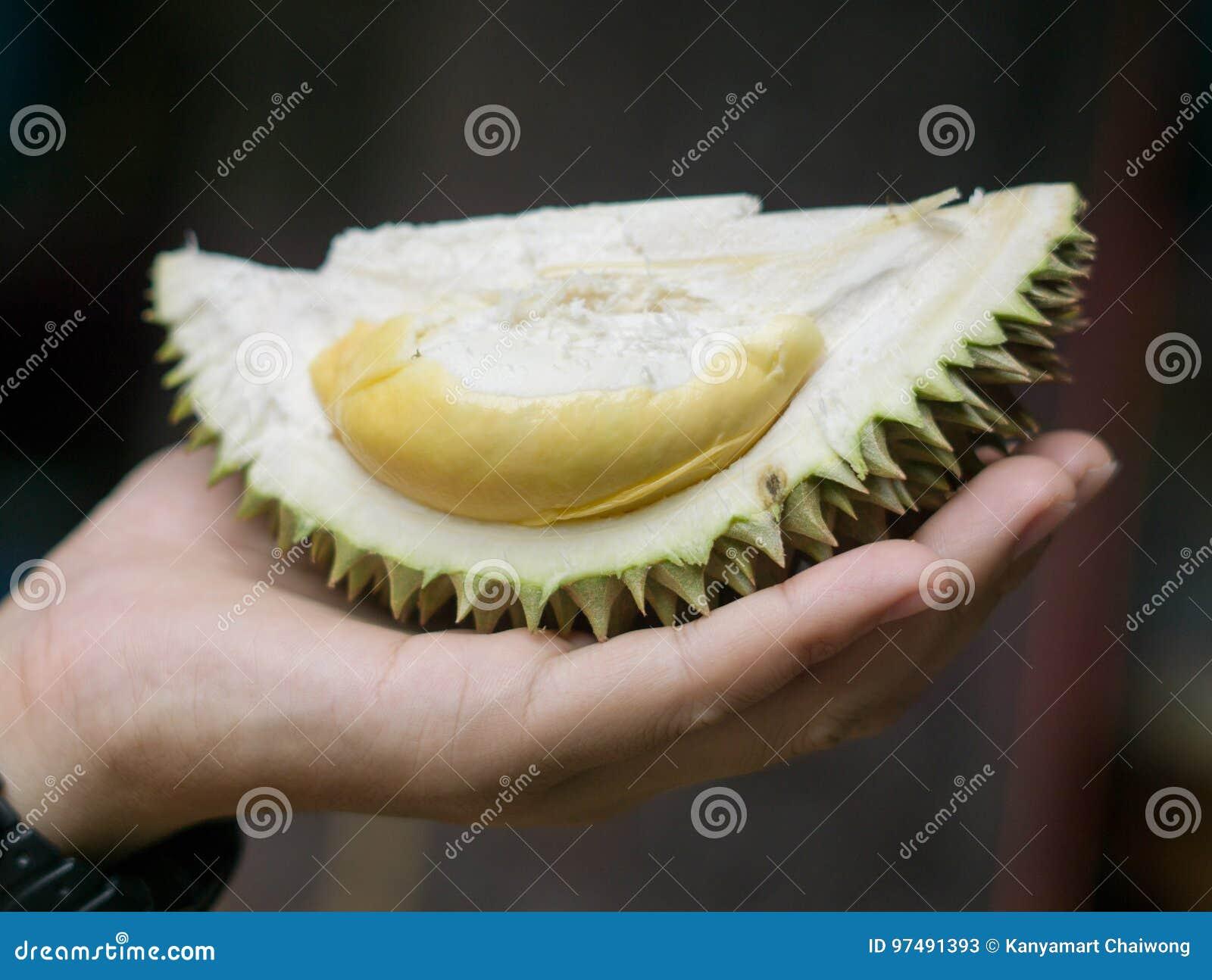 Cloes sulla frutta fresca del durian di Puangmanee a disposizione
