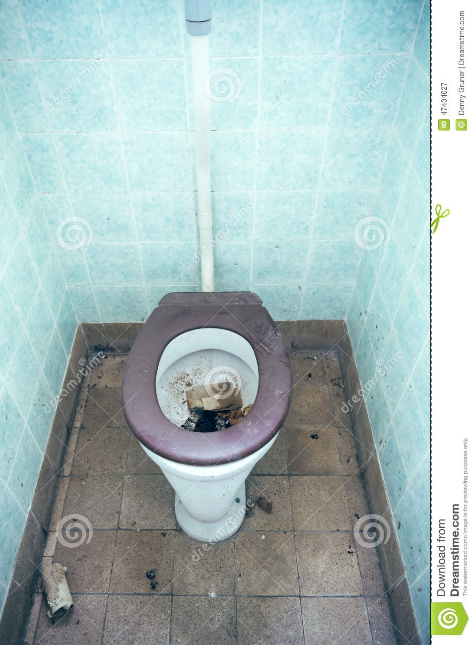 Clogged Nasty Old Seat Toilet ...