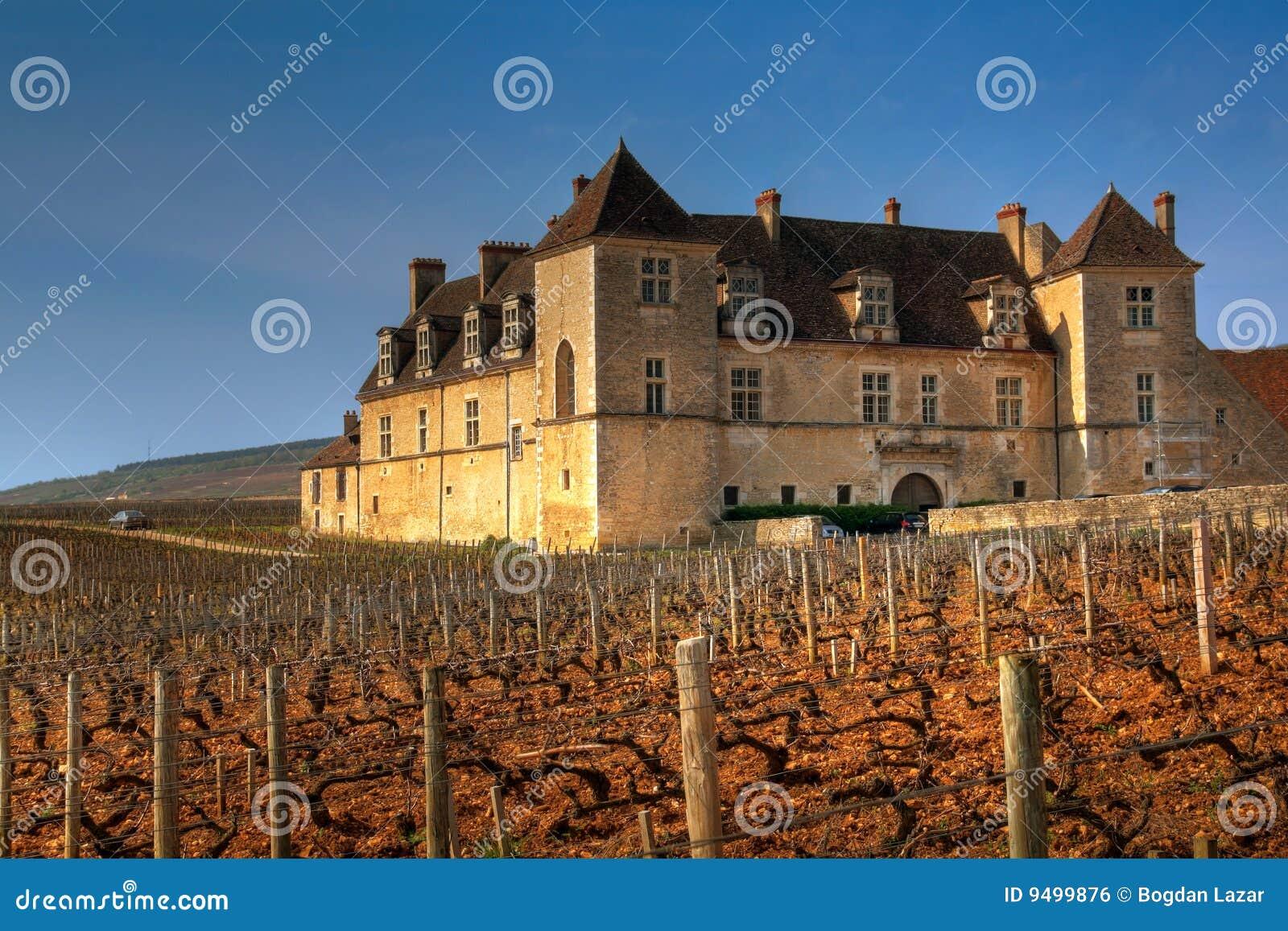 Clos de Vougeot, Burgundy, France