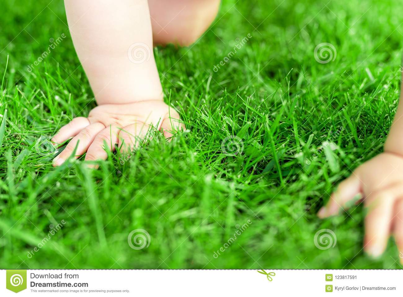 Close-up baby crowling through green grass lawn. Details infant hand walking in park . Child discovering and exploring nature and