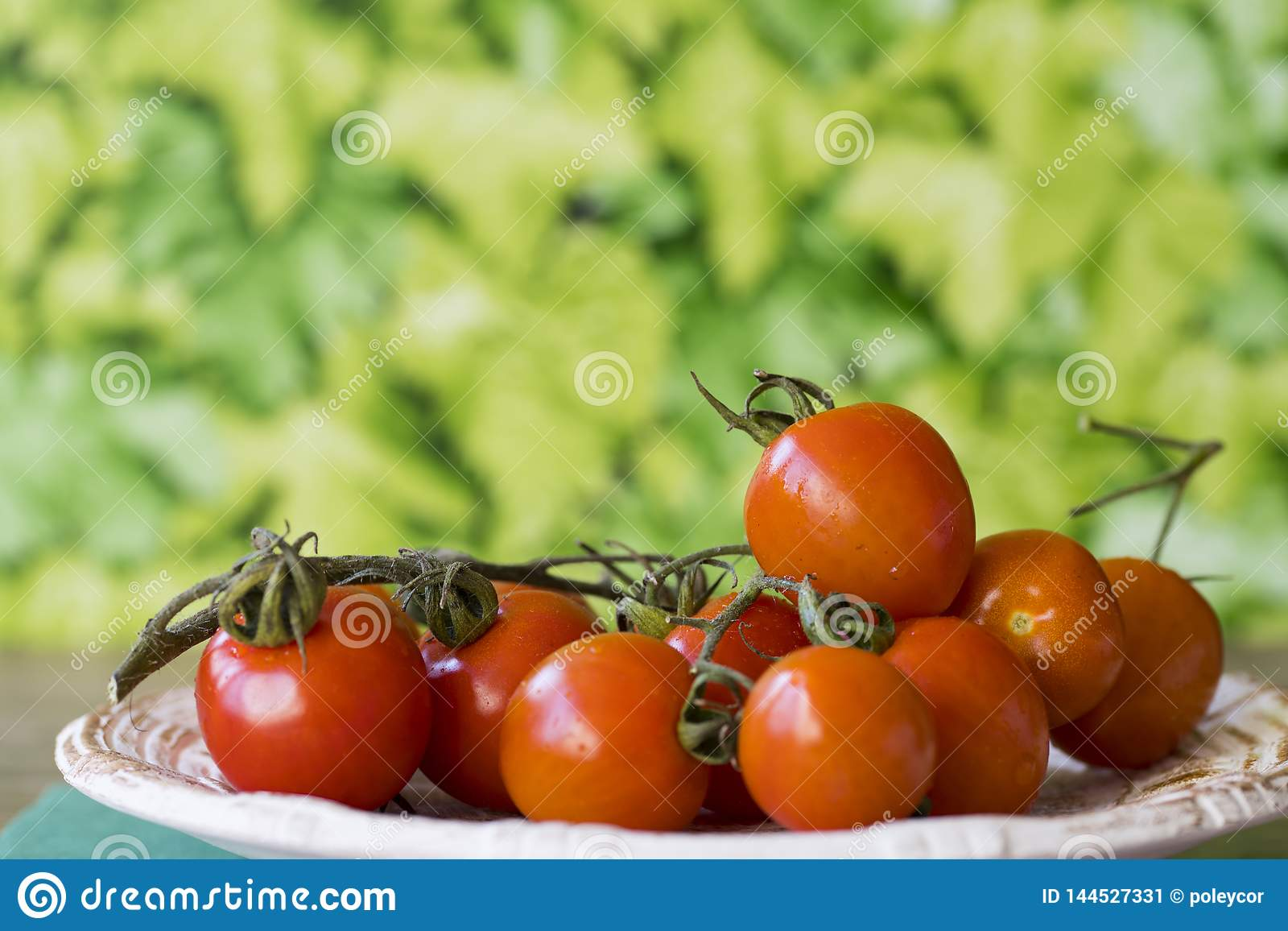 Fresh red cherry or ramano tomatoes on white plate in garden, against green leaf background. Space for text