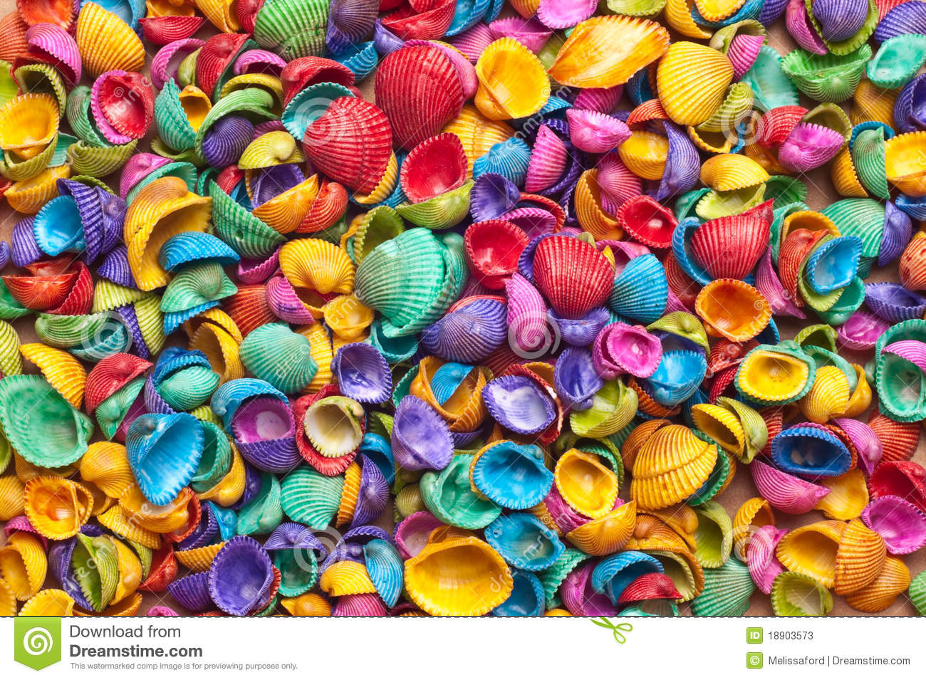 Close Up Of Colored Shells Background Texture Stock Photos