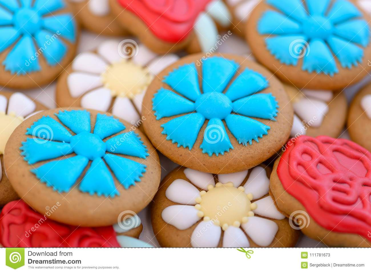 Close-up colorful gingerbread cookie