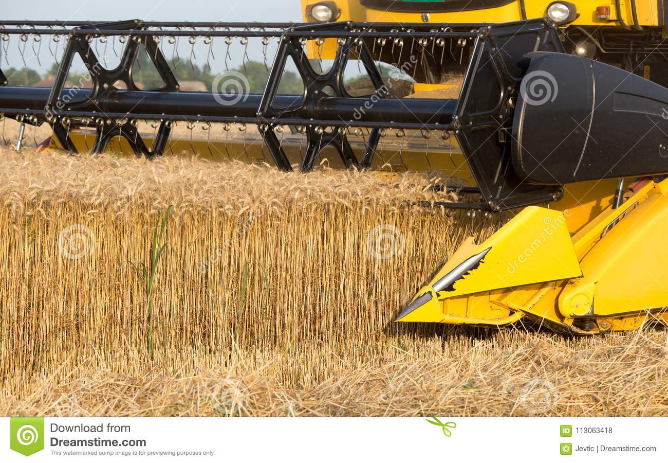 Side View Of Combine Harvester Cutting Crop Stock Photo - Image of