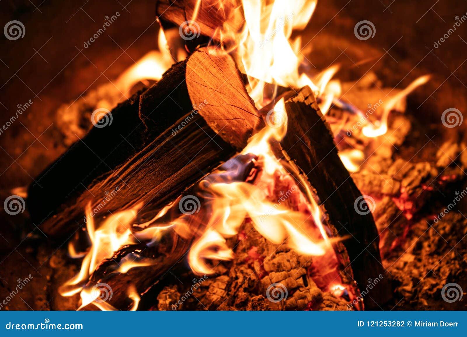 Close up da fogueira ou a fogueira, o burning e logs de madeira de incandescência