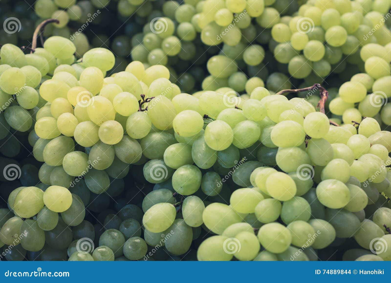 Close up das uvas - bonch de uvas verdes