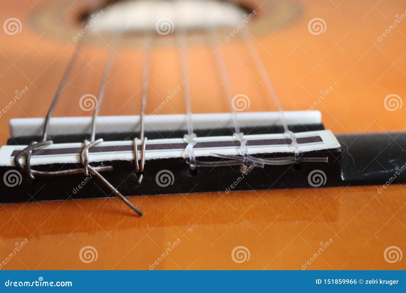 Close up de cordas clássicas da guitarra acústica