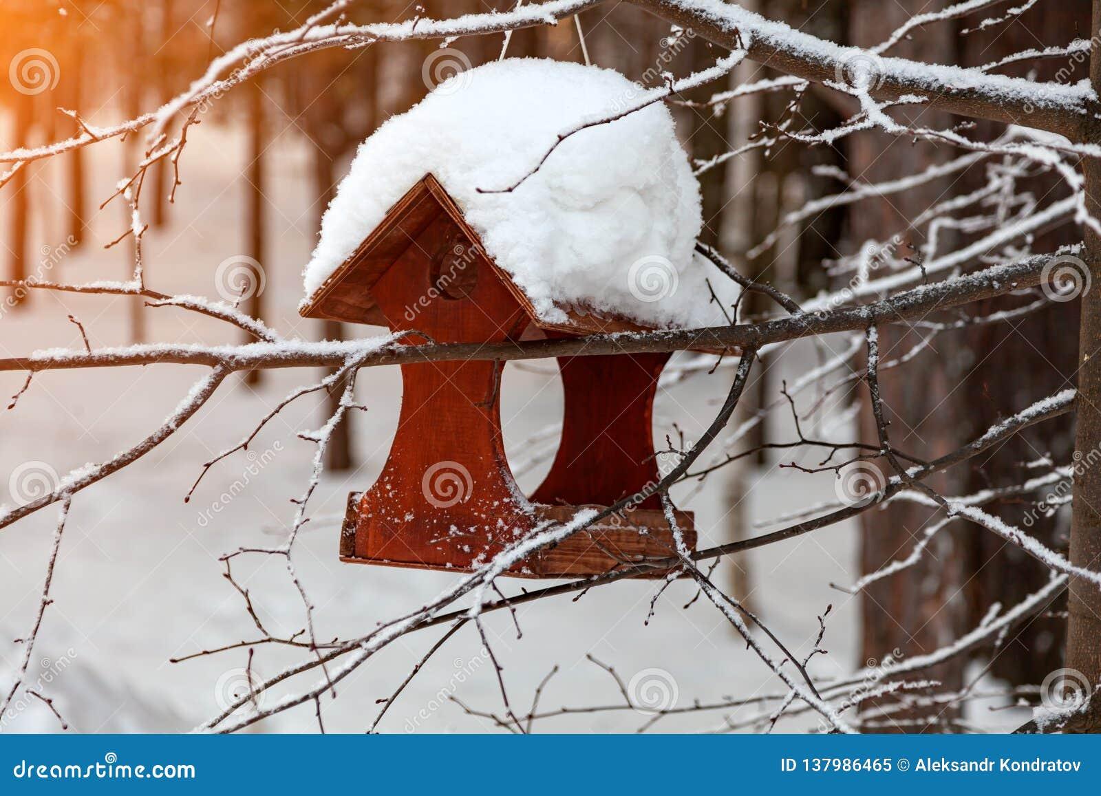 Close-up de um alimentador de madeira do pássaro do aviário coberto com uma grande camada de neve em um dia de inverno claro em u