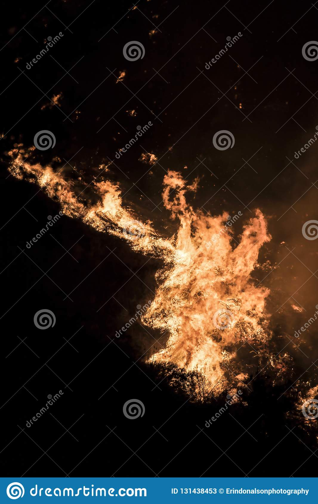 Close Up Detail of Bright Orange Flames at Night During California Fires