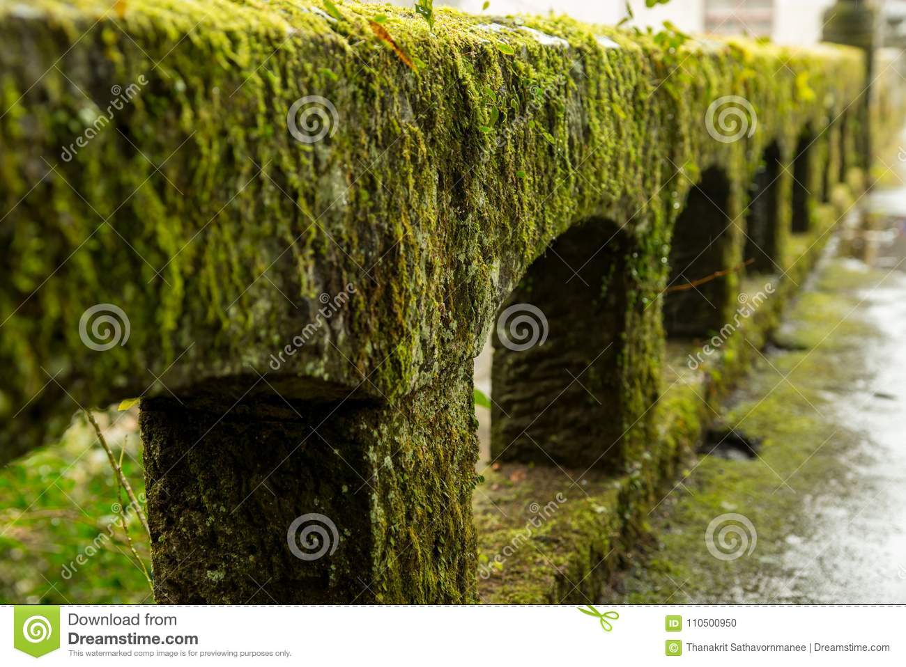 Stone parapet covered with moss after rain