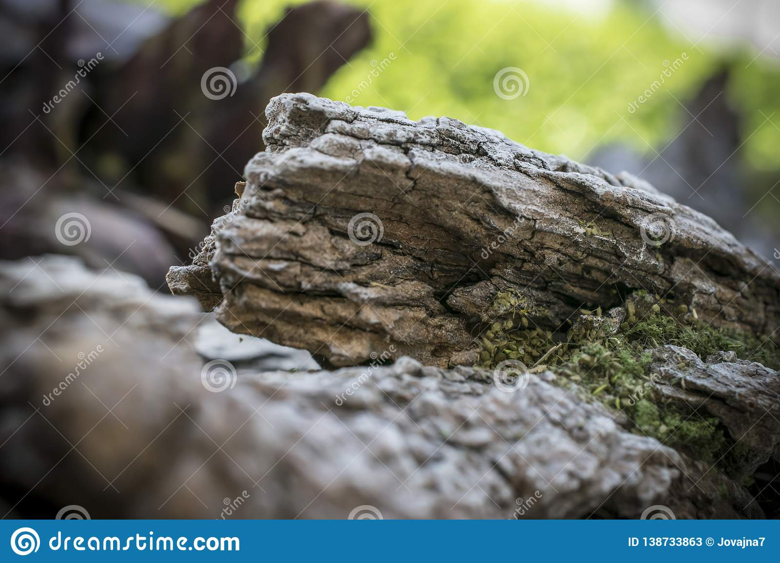 Close-up Of Details Of Wargaming Terrain Stock Image - Image of