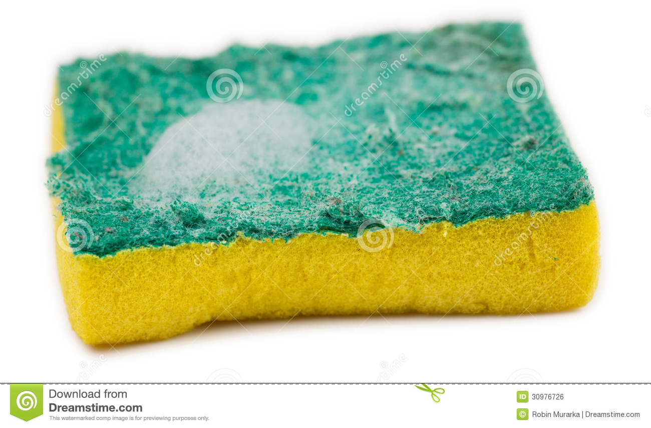Close Up Of Dirty Sponge With Soap Suds Royalty Free Stock