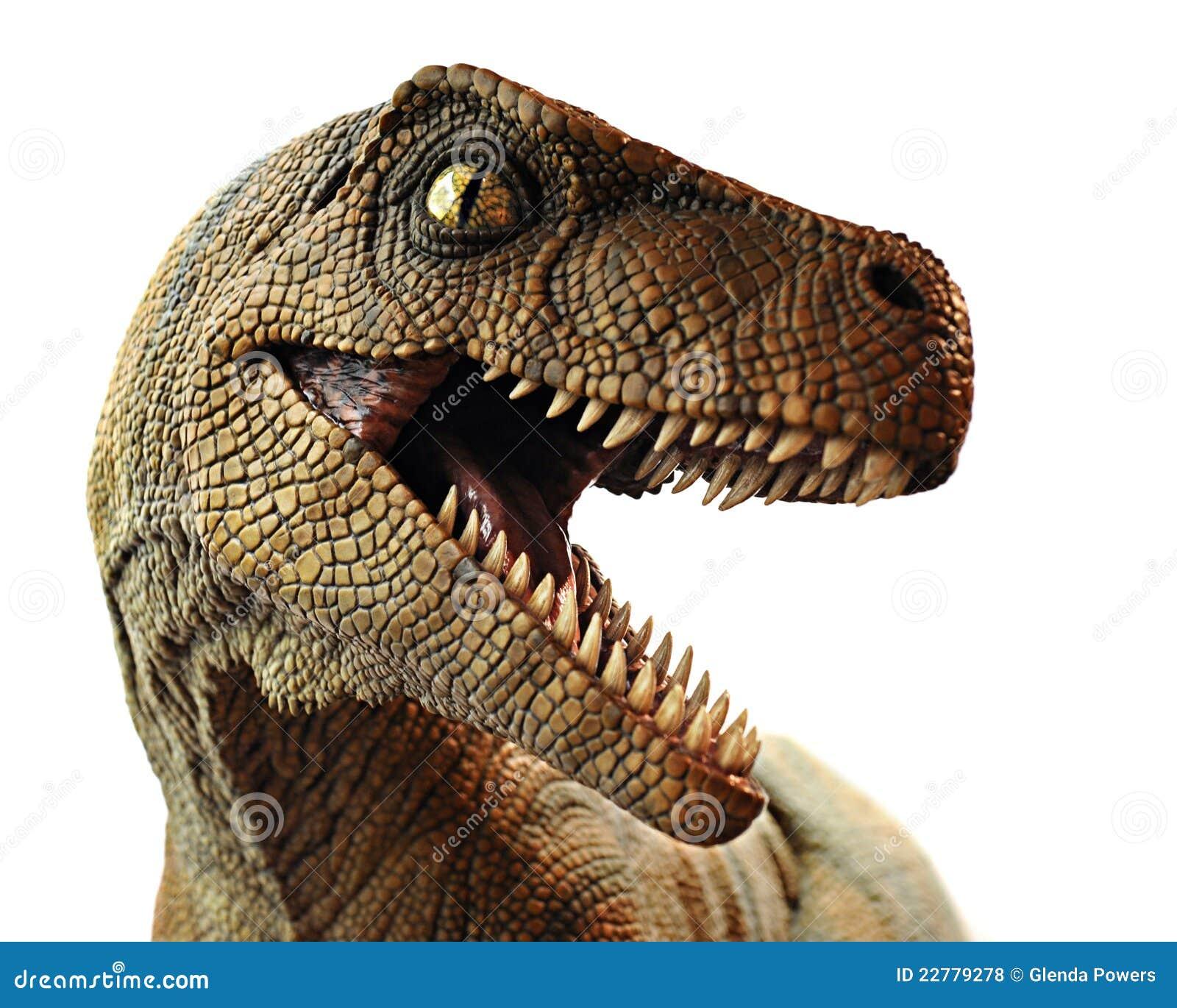 Close up do dinossauro