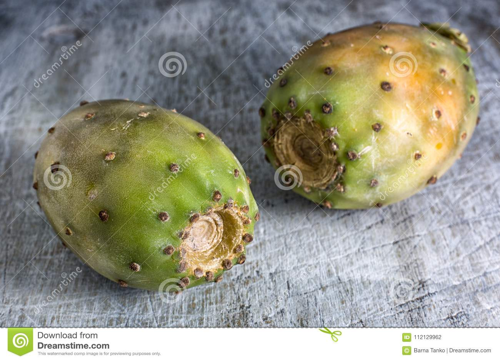 Close up do fruto do cacto