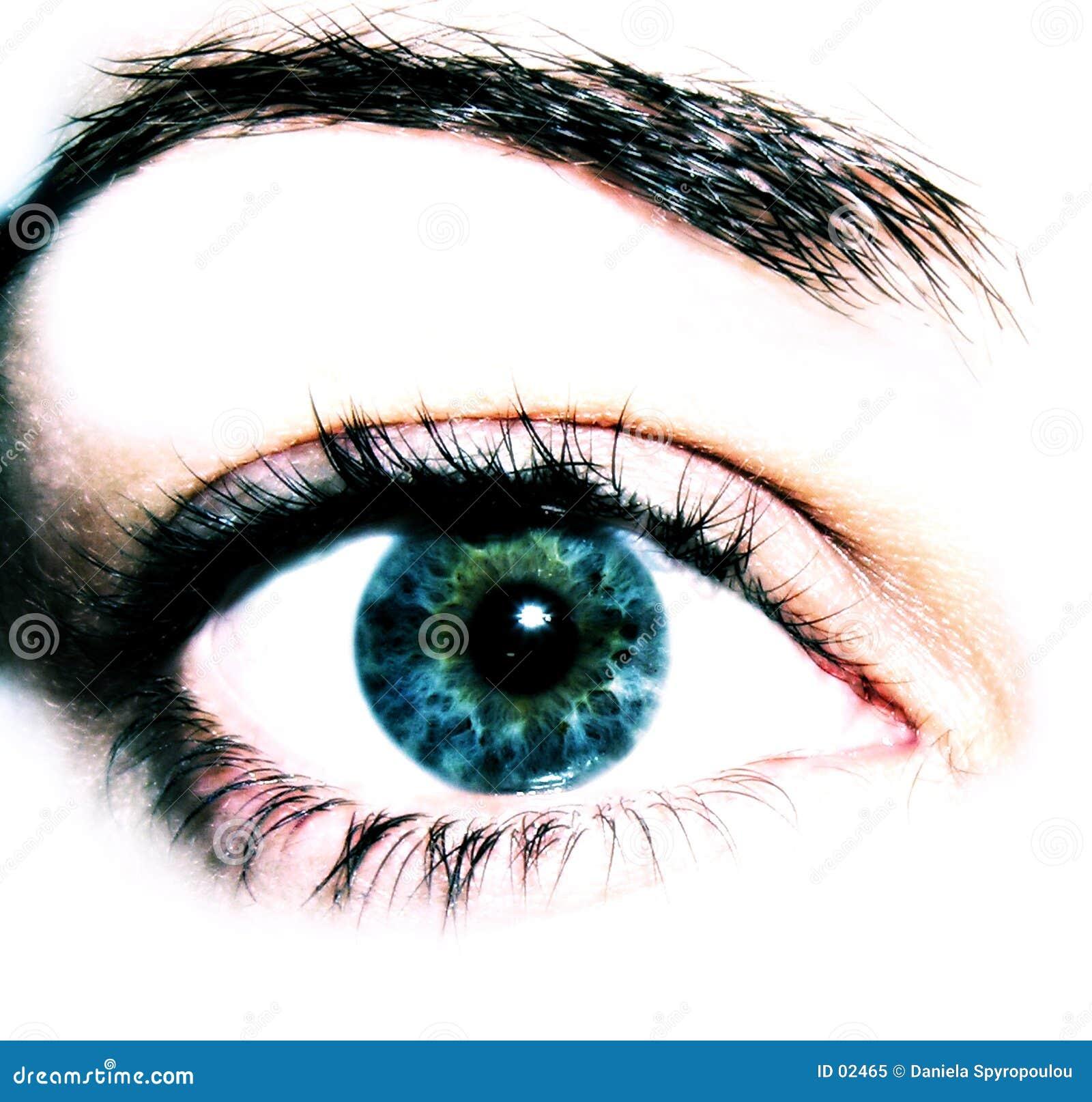 Download Close-up do olho imagem de stock. Imagem de olhar, humano - 2465
