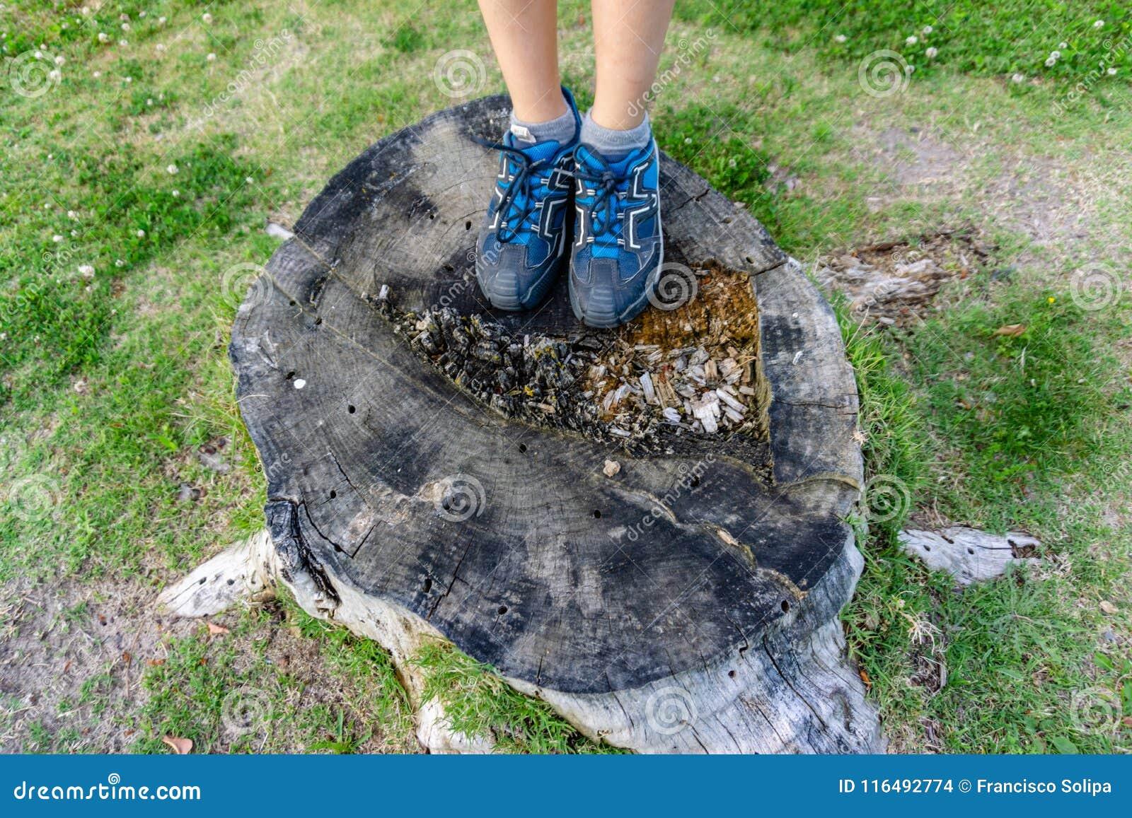Close-up dos pés do caminhante do adolescente que andam na floresta