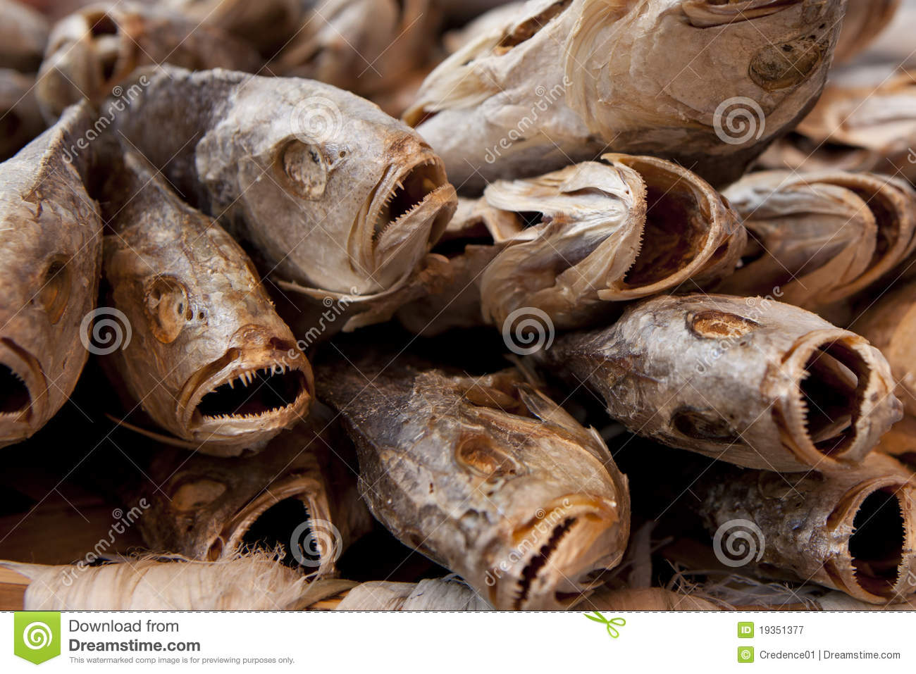 Close up of dried salted fish royalty free stock for Chinese salted fish