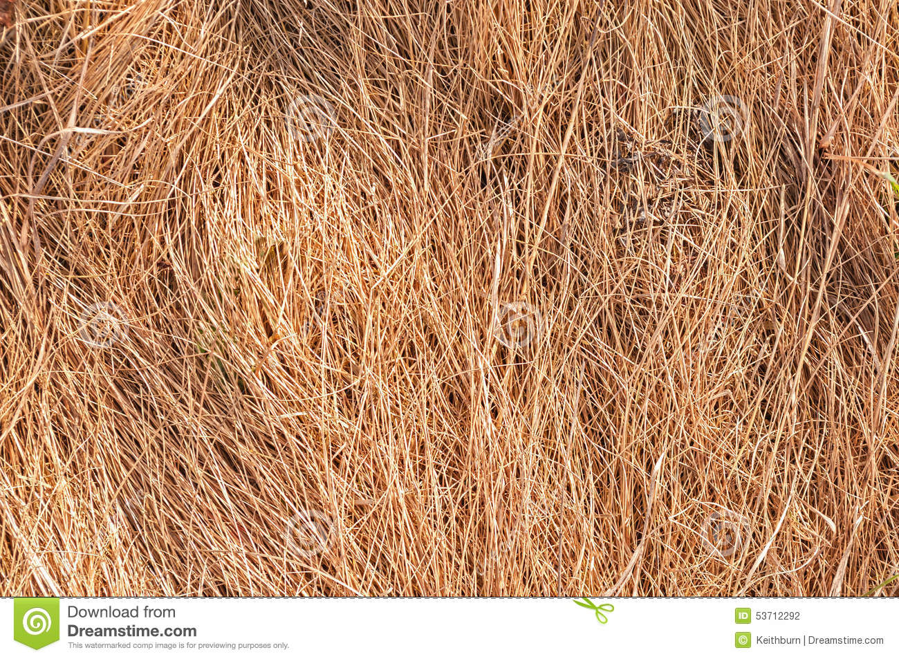dry grass backgound royalty free stock photography Haystack Fall Hay Bale Clip Art