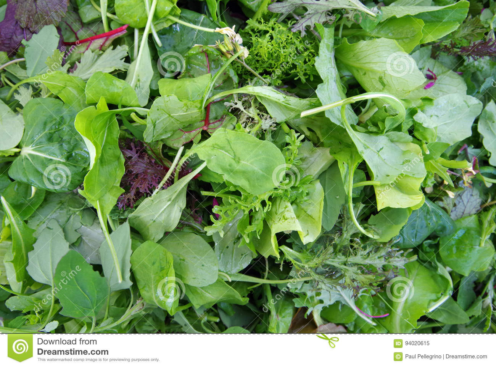 Close up empilhado salada de Mesclun