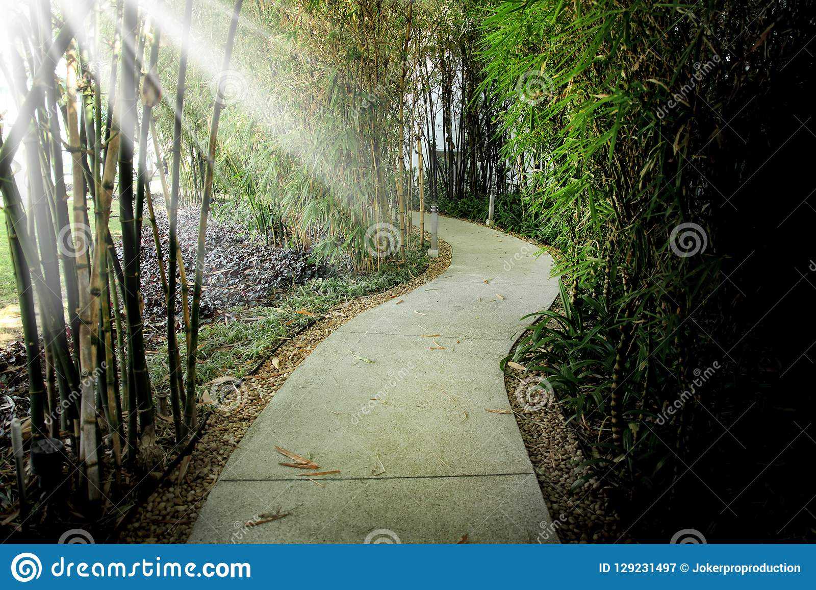 Close up empty footpath in public park and beam of light in Bang