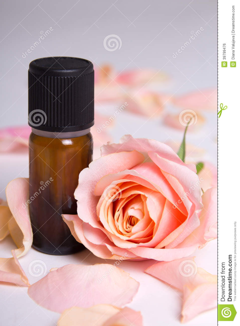 Close up of essential oil and rose petals over grey stock photo image 39799476 - Rose essential oil business ...
