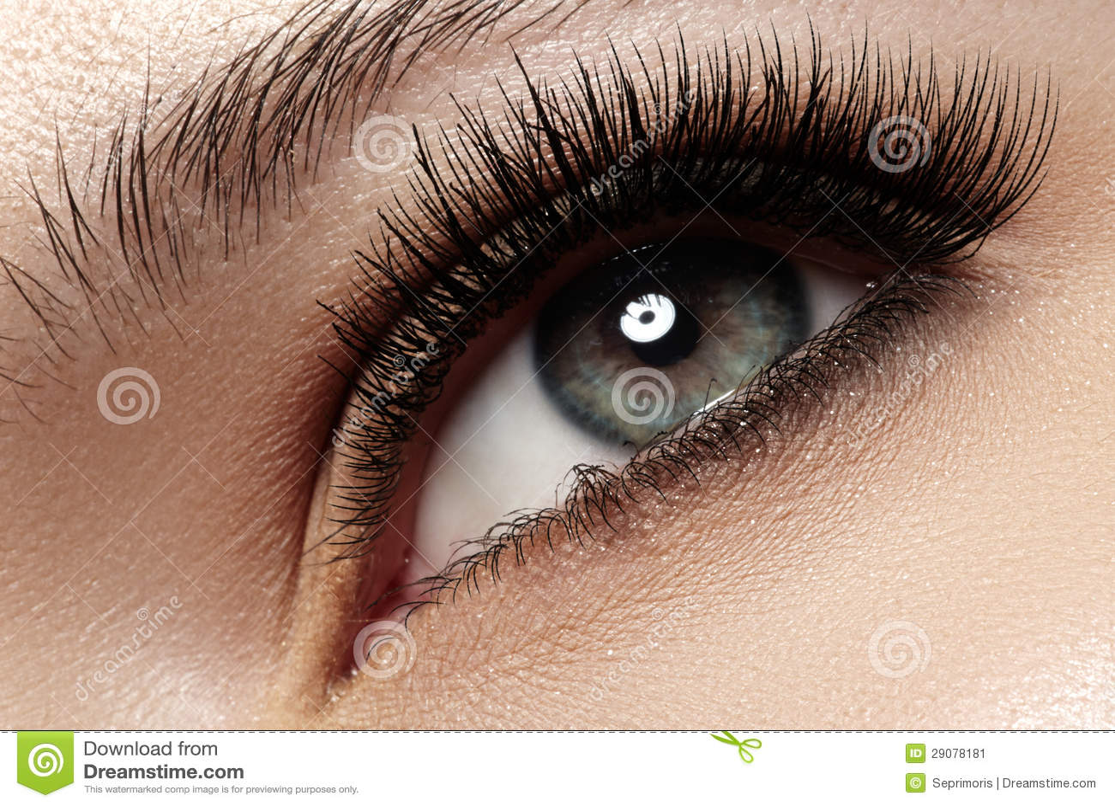 Close-up eye with fashion light natural make-up, extra long and volume eyelashes