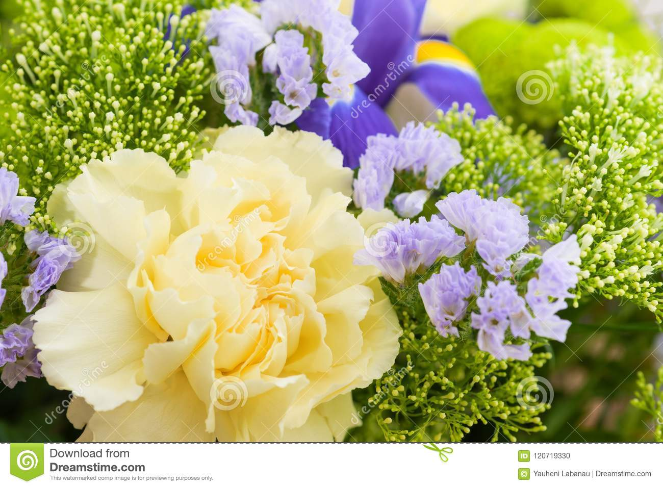 Close Up Flower Bouquet Background Stock Photo Image Of