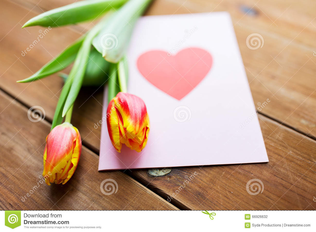 tulip in a heart card up of flowers and greeting card with stock 7267