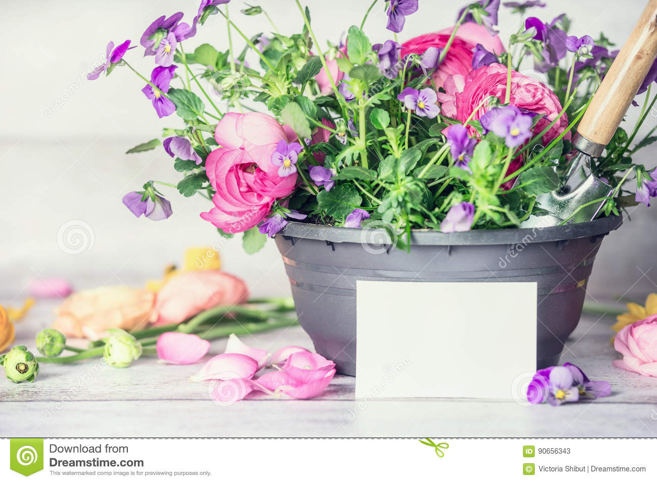 Close Up Of Flowers Pot With Shovel And White Paper Greeting Card On