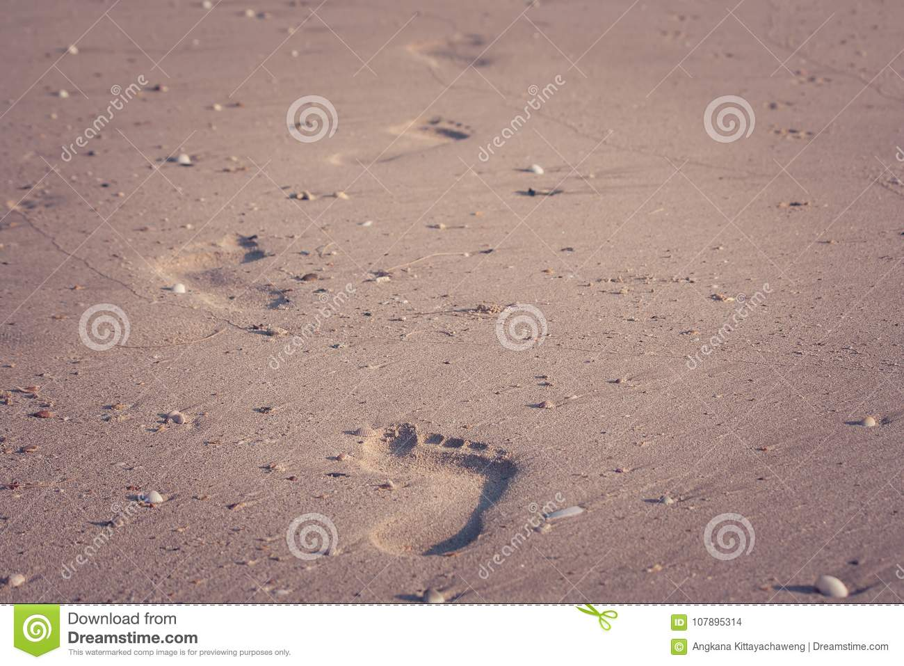 Close up footprints on sand beach in summer vacation seasonal in vintage style.