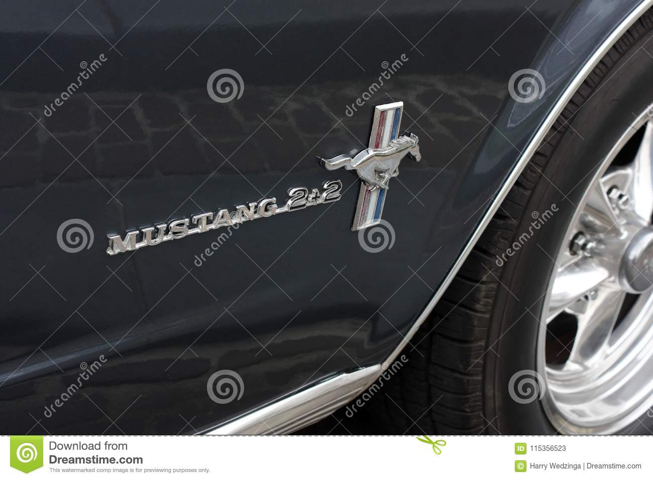 Close-up of Ford Mustang 2+2 logo
