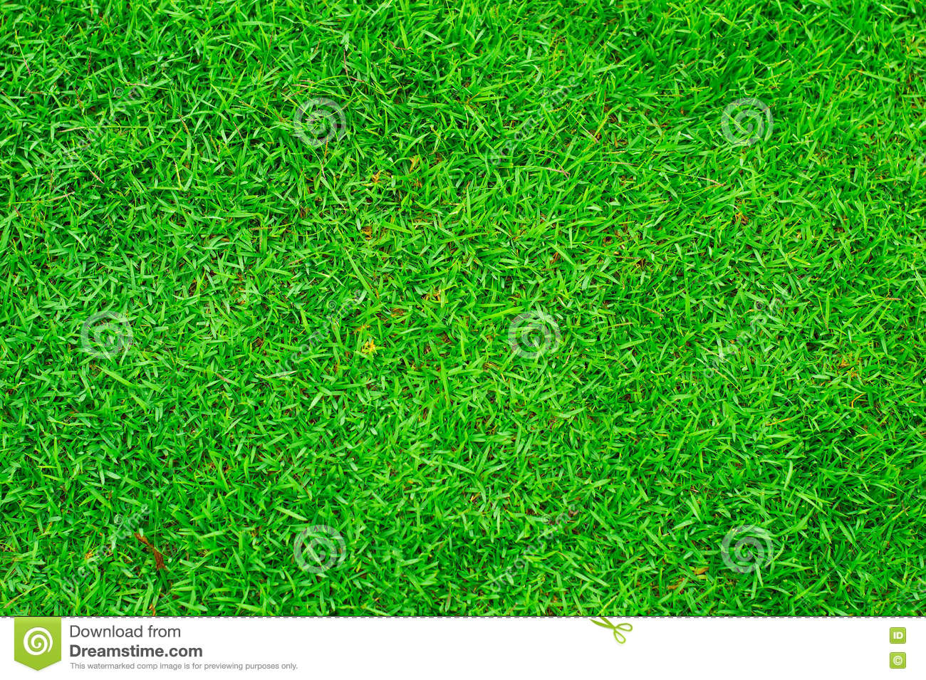 grass texture game tileable close up green grass background texture up green grass background stock photo image of game natural