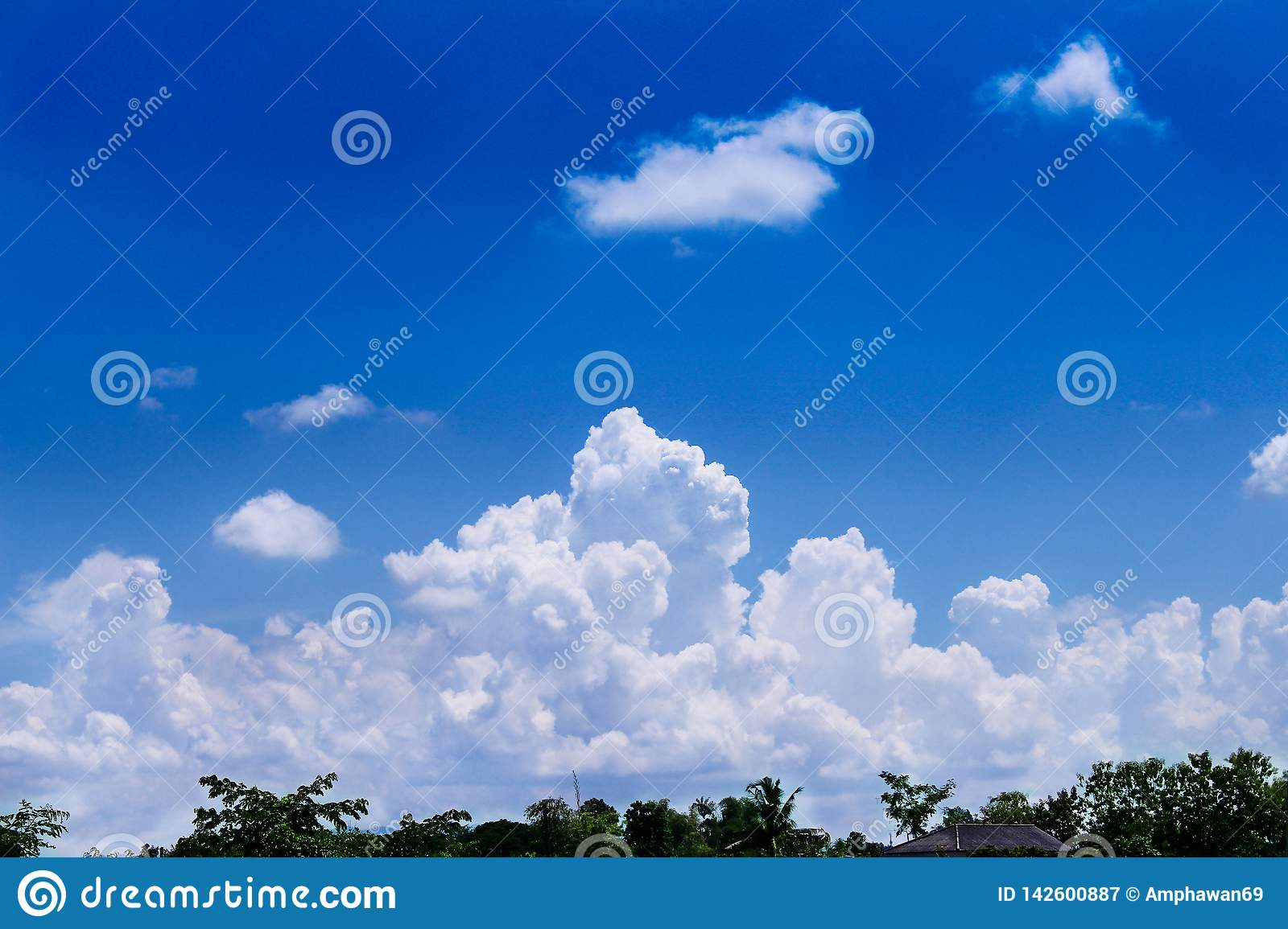 Green tree top with roof of home over on  beautiful blue sky and big clouds group for background