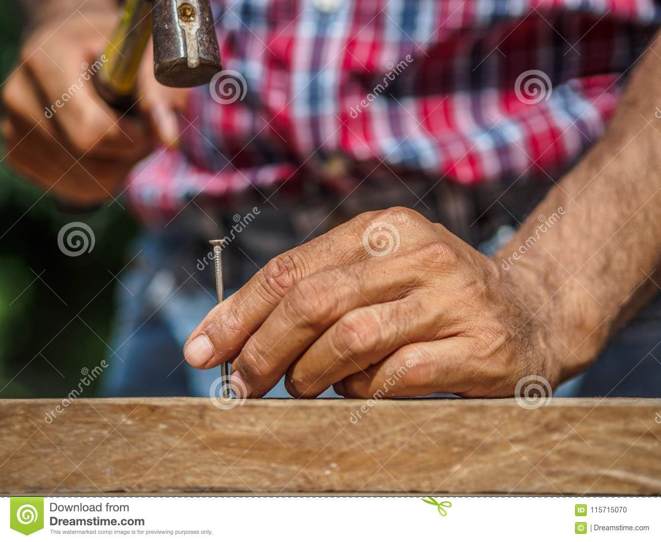 Close up of hammering a nail into wooden board. profession, carp