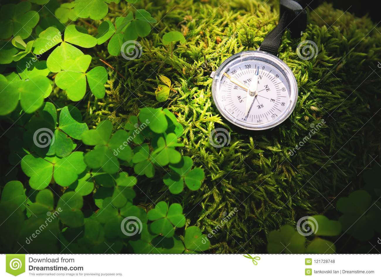 Close up handmade wooden compass, tree shadows on green nature grass ground. holiday adventure in forest. Compass
