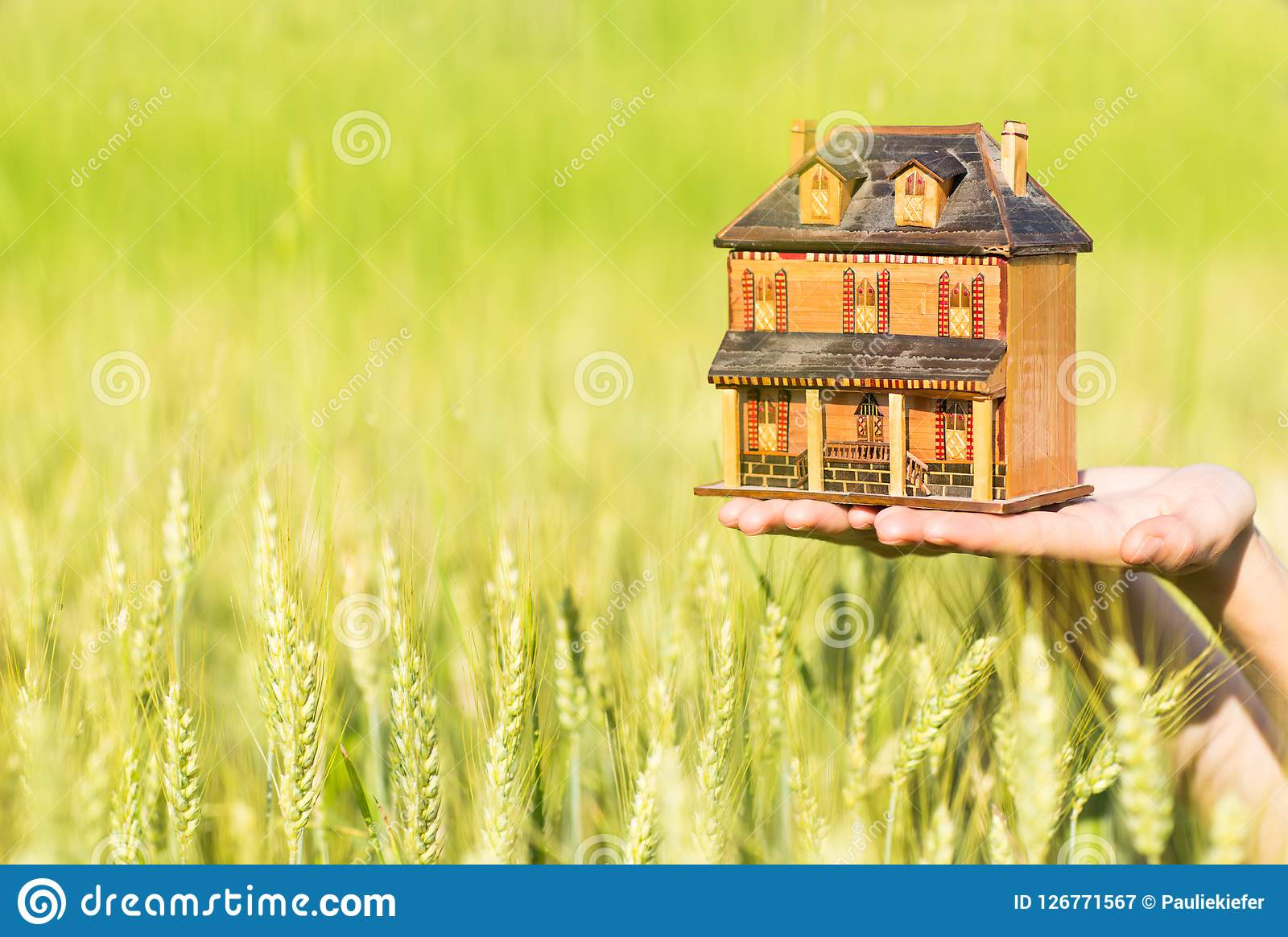 Close-up of hands holding a house model on a green meadow background.