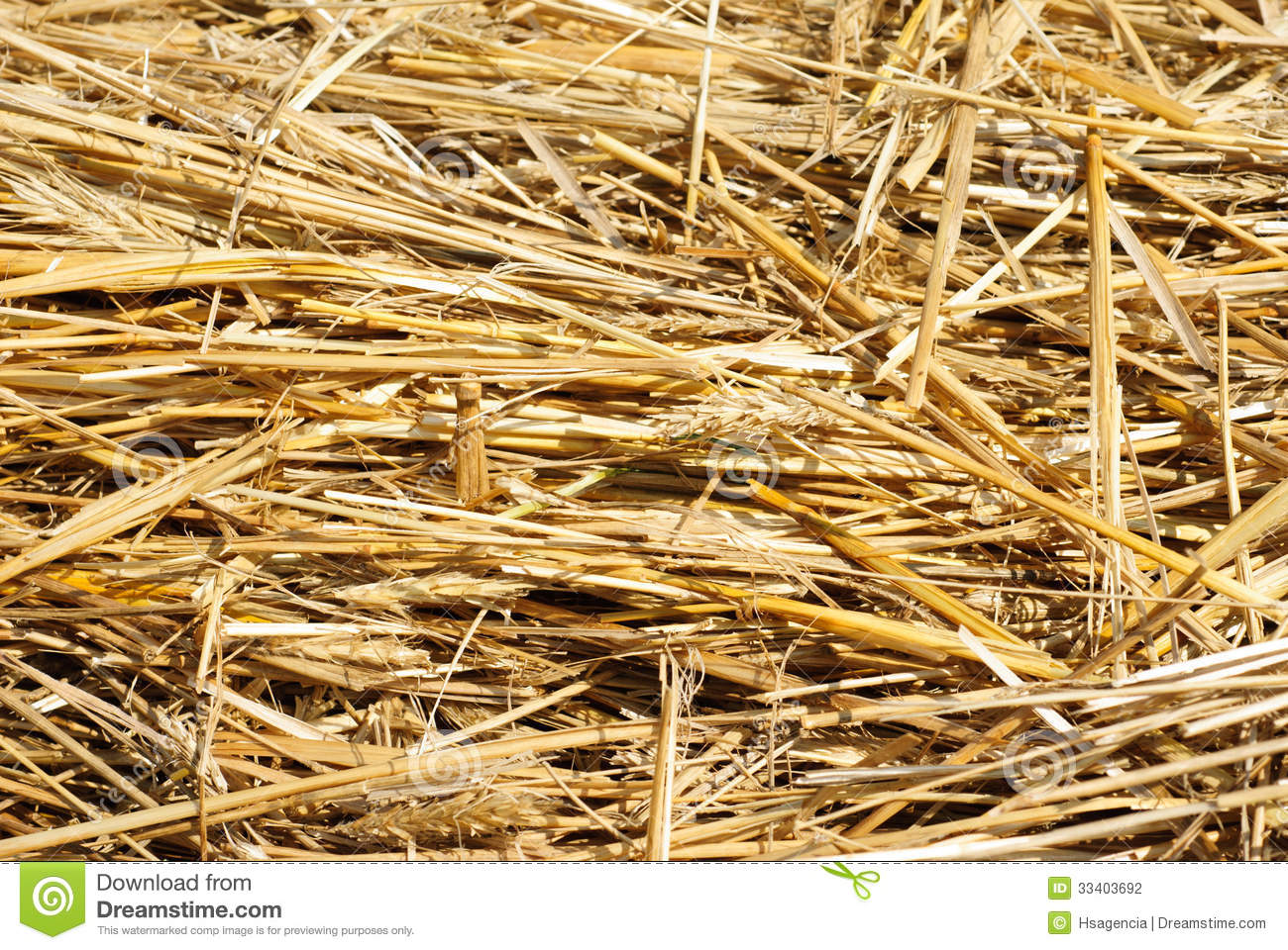 Close up hay straw stack texture
