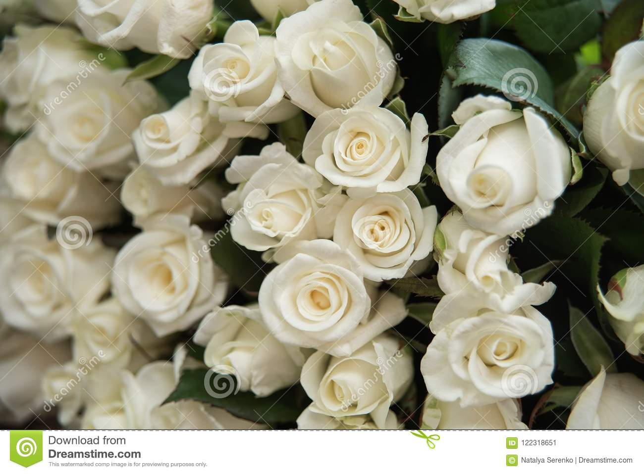 close-up of a huge bouquet of white roses