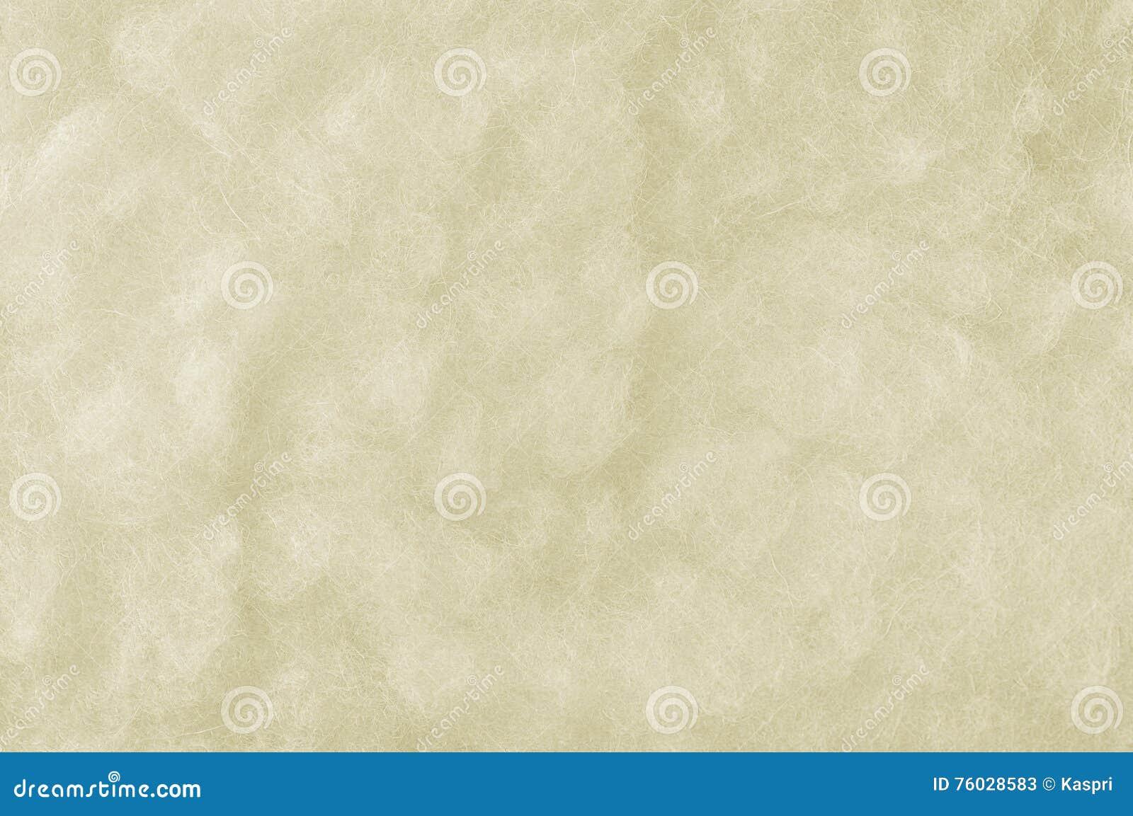 Close up macro de lãs cruas dos carneiros de Merino, grande fundo Textured branco detalhado do espaço da cópia do teste padrão, t