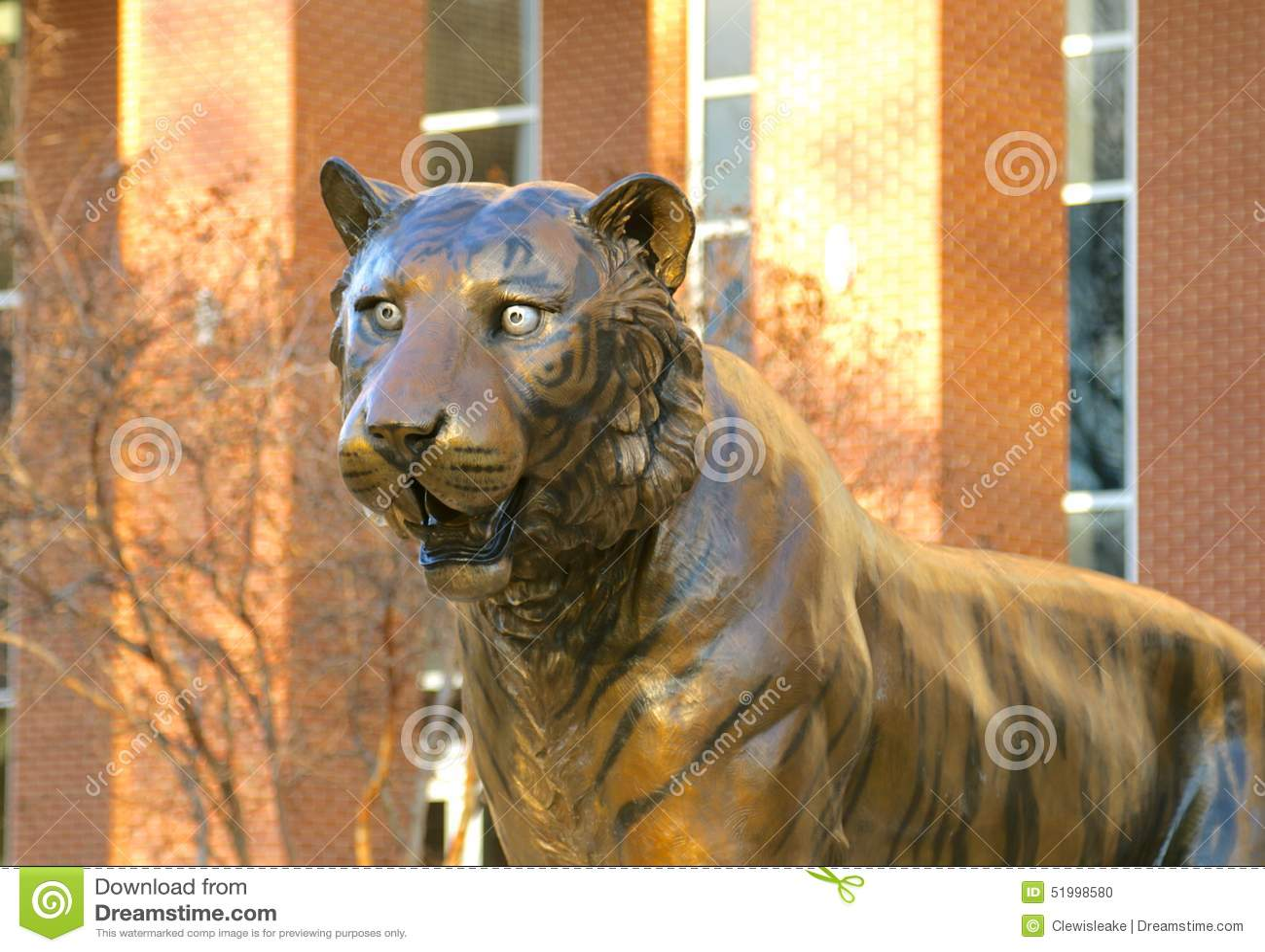 close up pussy painted cheetah