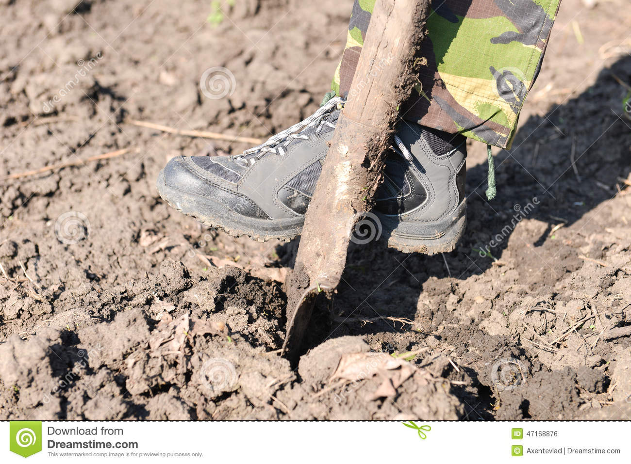 Close Up Of Man Digging Spring Soil With Spade Preparing The Stock Photo Image 47168876