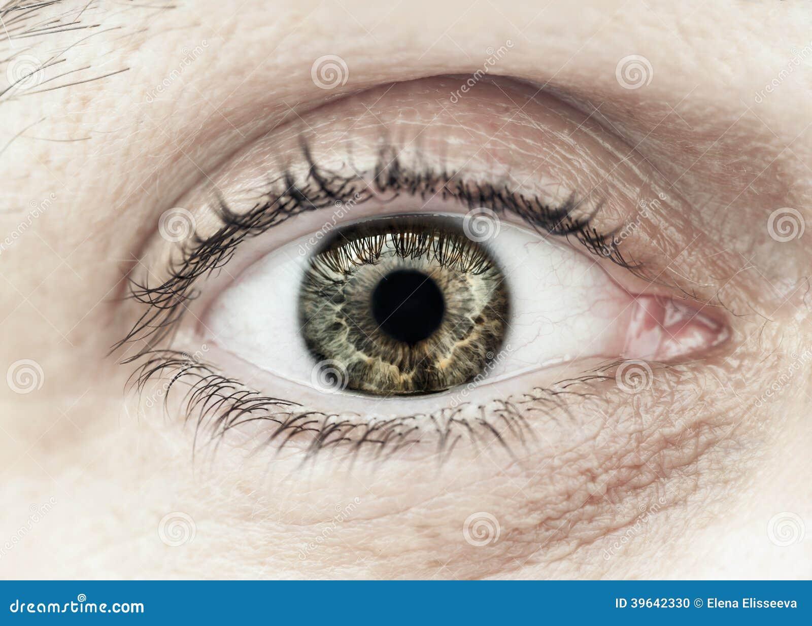 Close up masculino do macro do olho