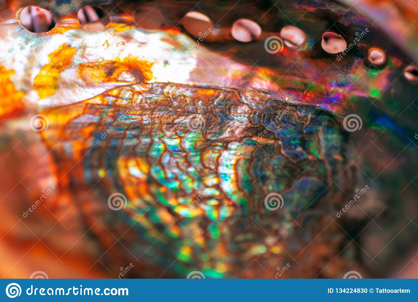 Close-up of mother of pearl. Multicolor texture of seashell, multicolor nacre texture. Colored nacre background