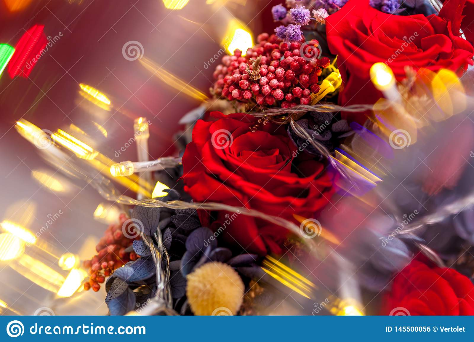 Close up of one red rose with yellow garland