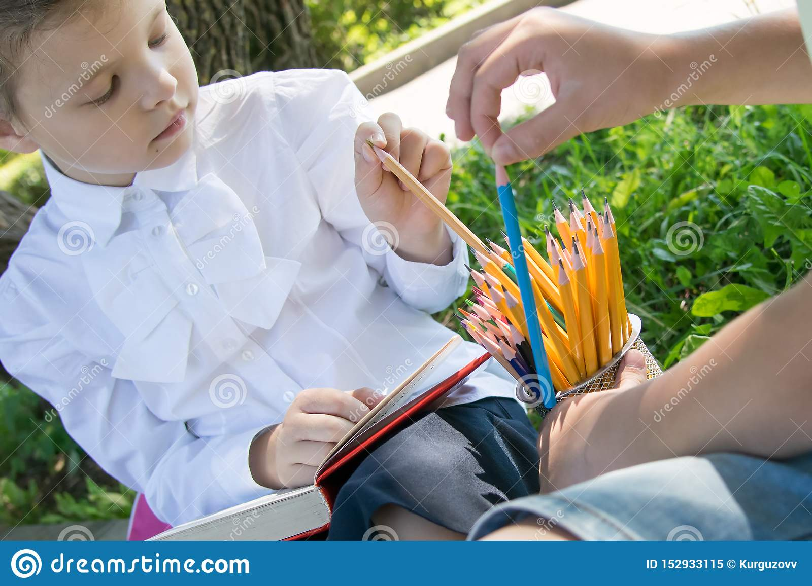 Close-up, in the park, in the fresh air, from a large number of pencils, the students choose a sharpened