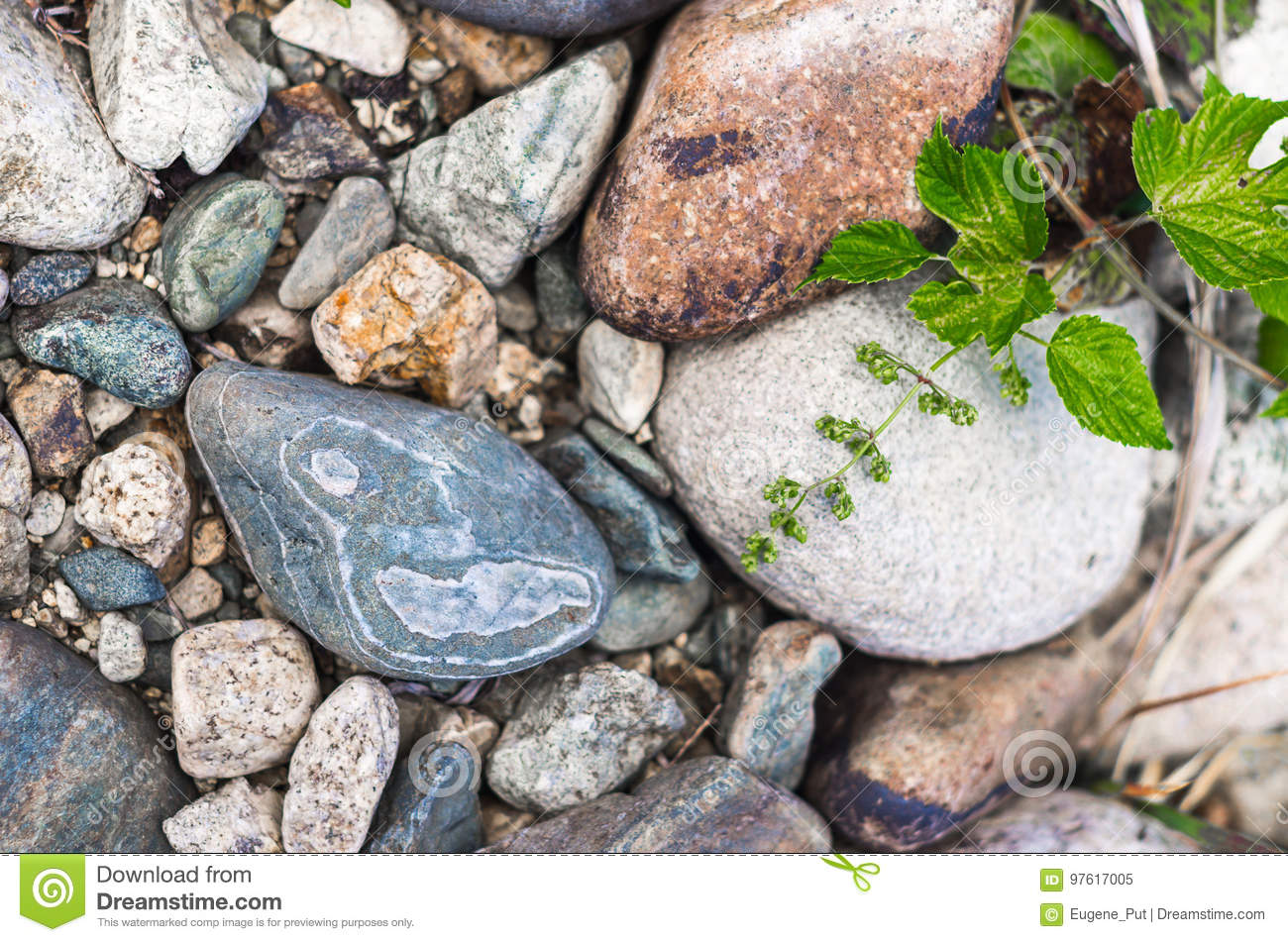 Close Up Of Pebbles On A Mountain River Bank, Colorful Texture Stock Image - Image of kazakhstan ...